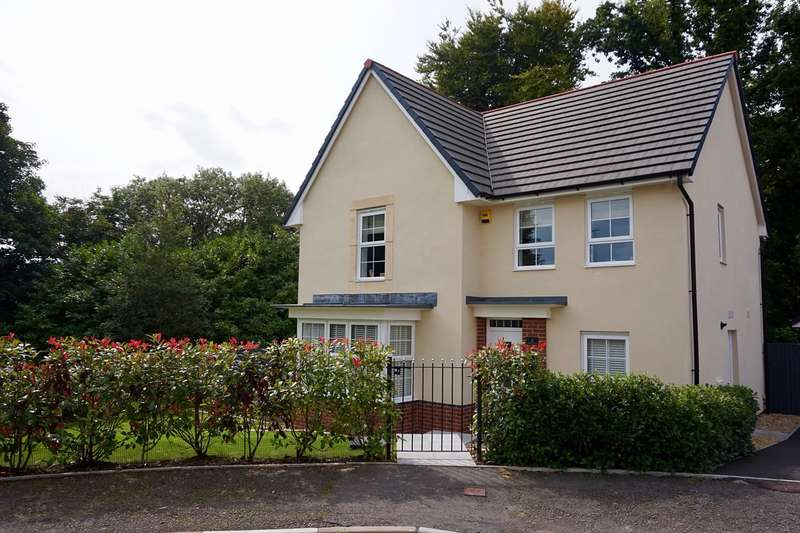 4 Bedrooms Detached House for sale in Chapel Walk, Penygarn, Pontypool, NP4