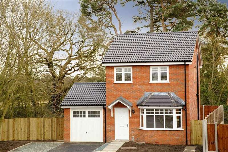 3 Bedrooms Detached House for sale in Brookfield Rise, Penley, LL13