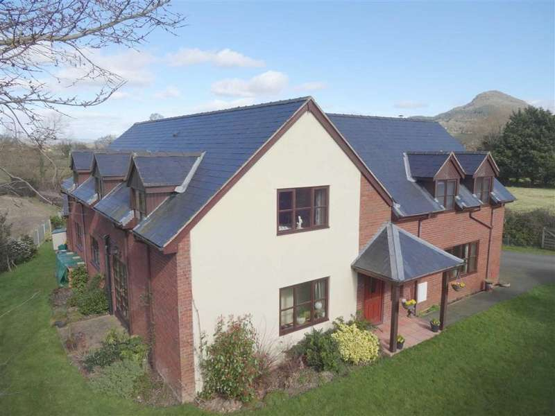 4 Bedrooms Detached House for sale in Plas Y Don, Trewern, Welshpool, Powys, SY21
