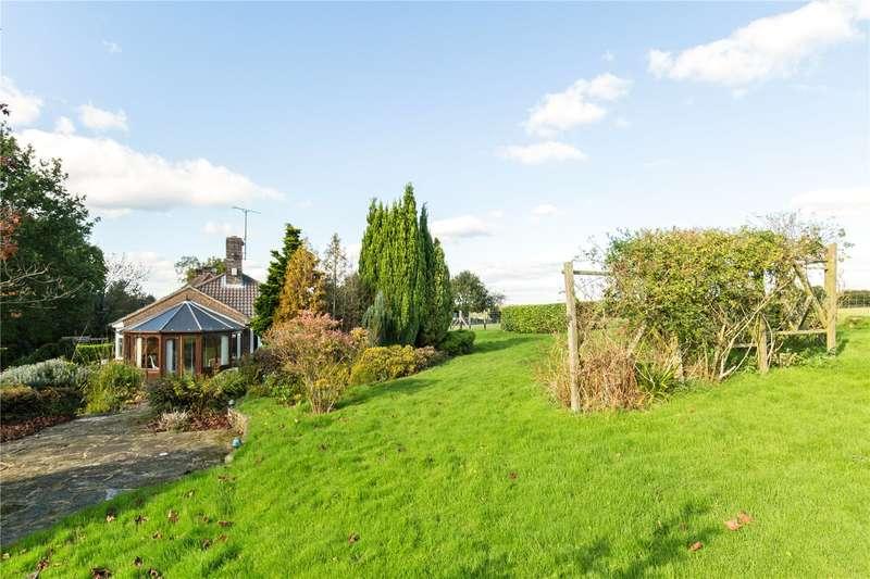 4 Bedrooms Detached Bungalow for sale in Church Lane, Plummers Plain, Horsham, West Sussex, RH13