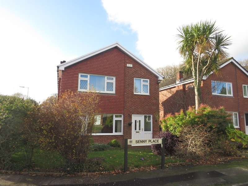 4 Bedrooms Detached House for sale in Senny Place, Cwmrhydyceirw, Swansea