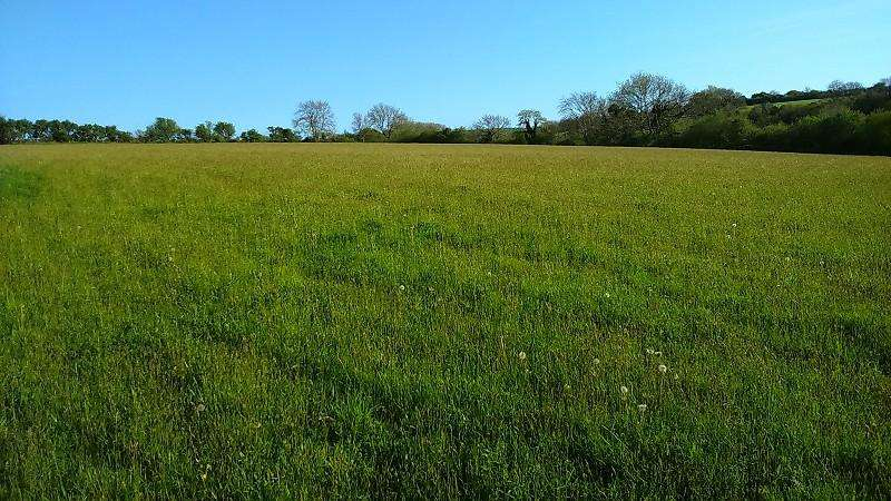 Land Commercial for sale in Golden Lion Fields , Caerwedros, Llandysul, Ceredigion. SA44