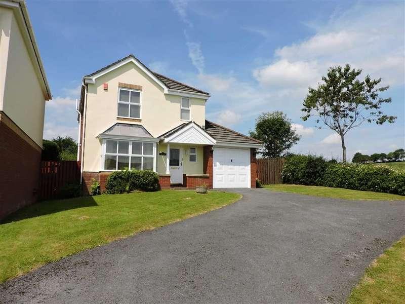 4 Bedrooms Detached House for sale in Pant Y Fedwen, Peniel,Carmarthen