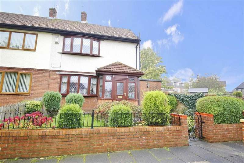 2 Bedrooms Semi Detached House for sale in Swindon Road, Springwell, Sunderland, SR3