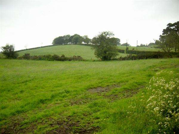 Land Commercial for sale in Tattygare, Lisbellaw