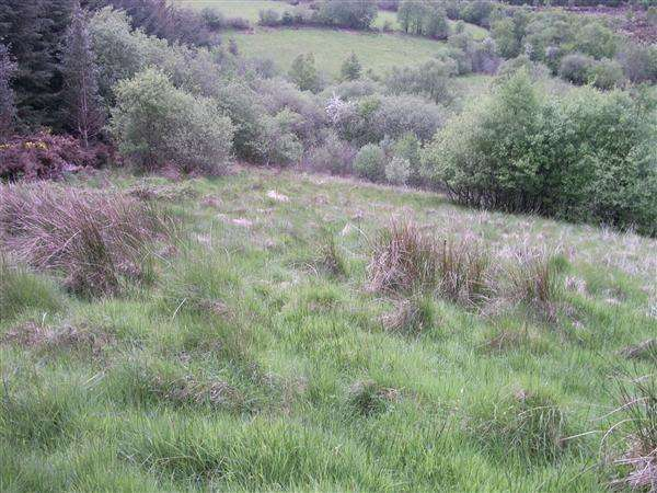 Land Commercial for sale in 23 Jenkins Road