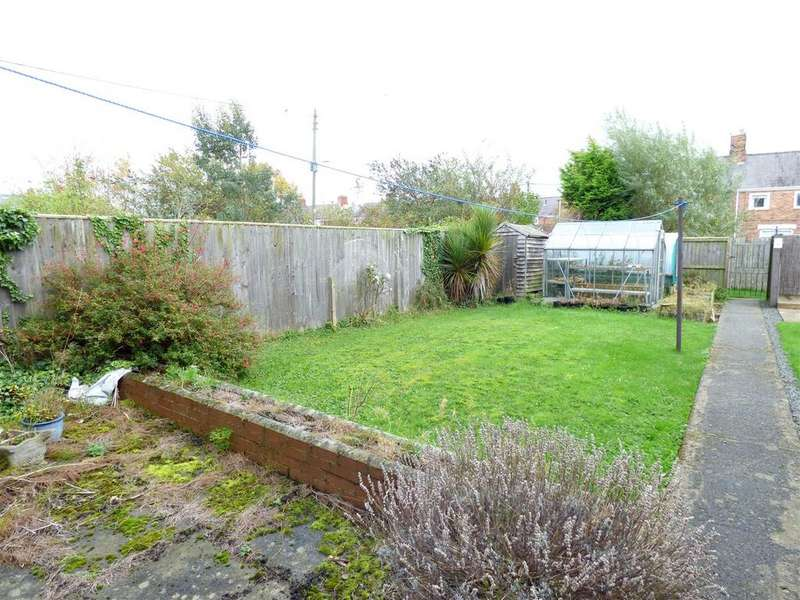 3 Bedrooms Terraced House for sale in Briarwood Street, Fencehouses, Houghton-Le-Spring