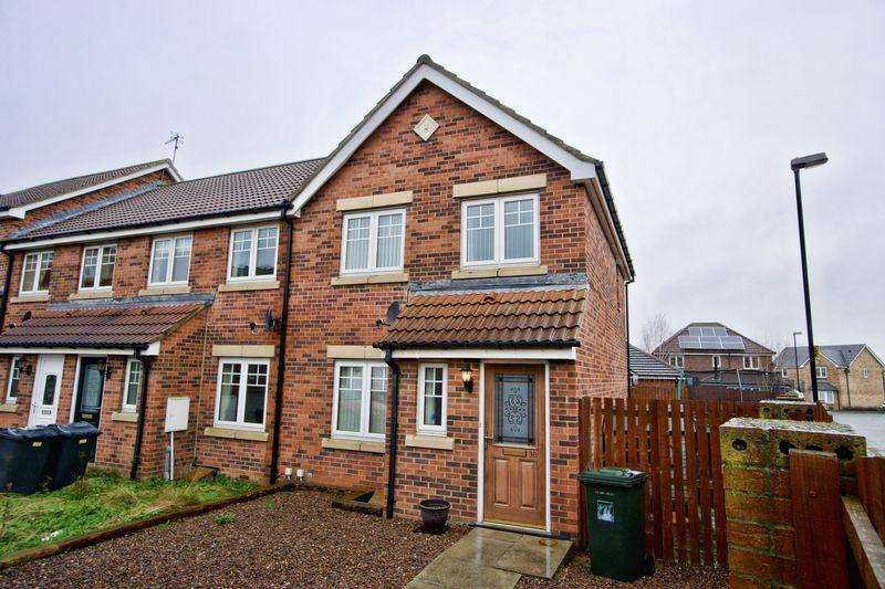 3 Bedrooms Terraced House for sale in Forest Gate, Palmersville