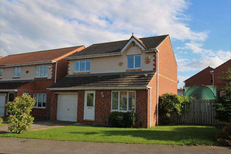 3 Bedrooms Detached House for rent in Black Diamond Way, Eaglescliffe, TS16 0SE