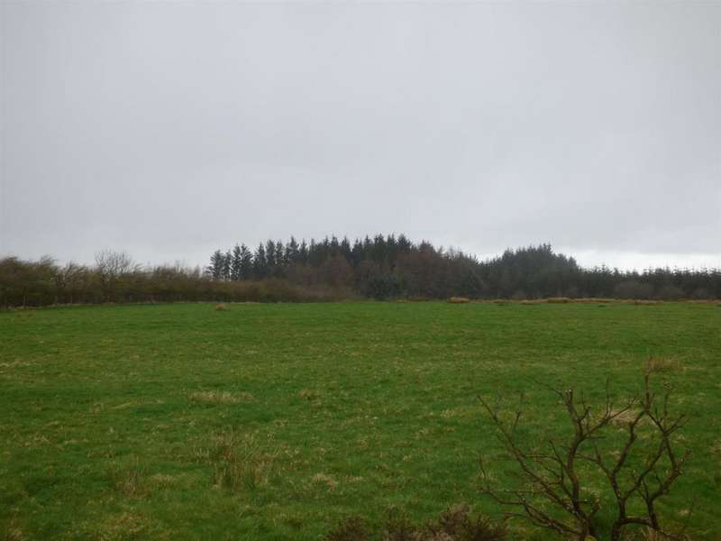 Land Commercial for sale in Abergorlech Road, Horeb