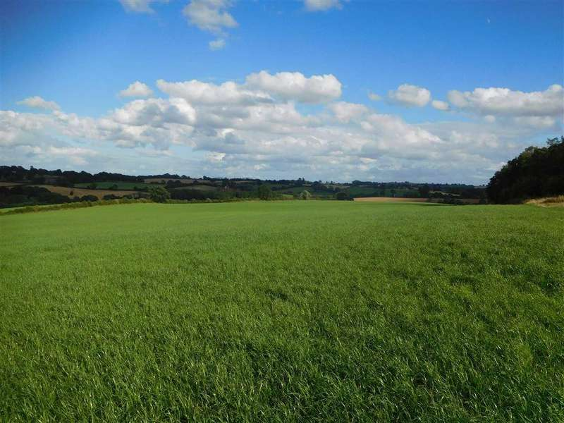 Farm Land Commercial for sale in Winslow, Bromyard