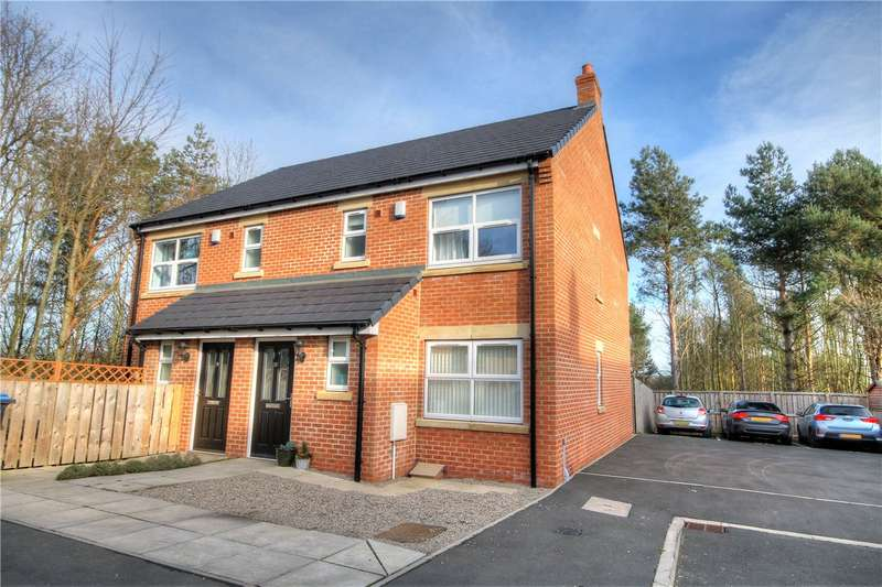 3 Bedrooms Semi Detached House for sale in Greenland Mews, Pelton Fell, Chester le Street, DH2