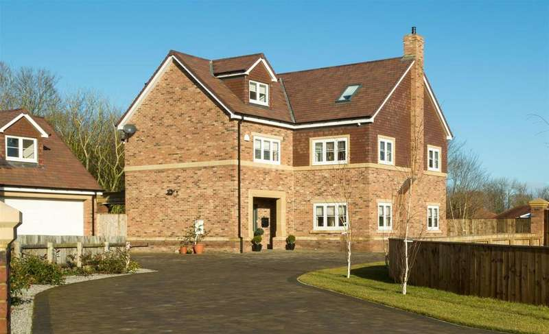 6 Bedrooms Detached House for sale in Spring Meadows, Houghton Le Spring