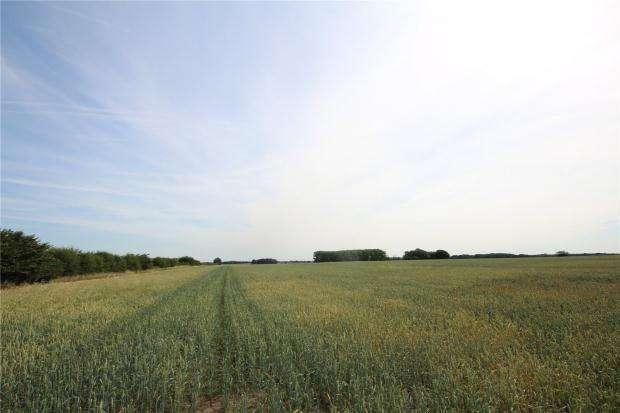 Land Commercial for sale in Land East Of Stilton, Peterborough, Cambridgeshire