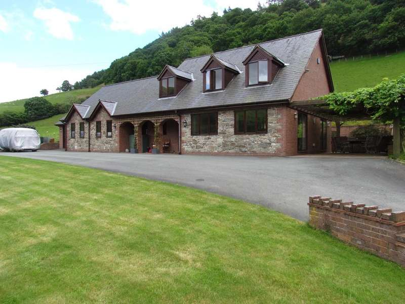 4 Bedrooms Detached House for sale in Llangynog SY10