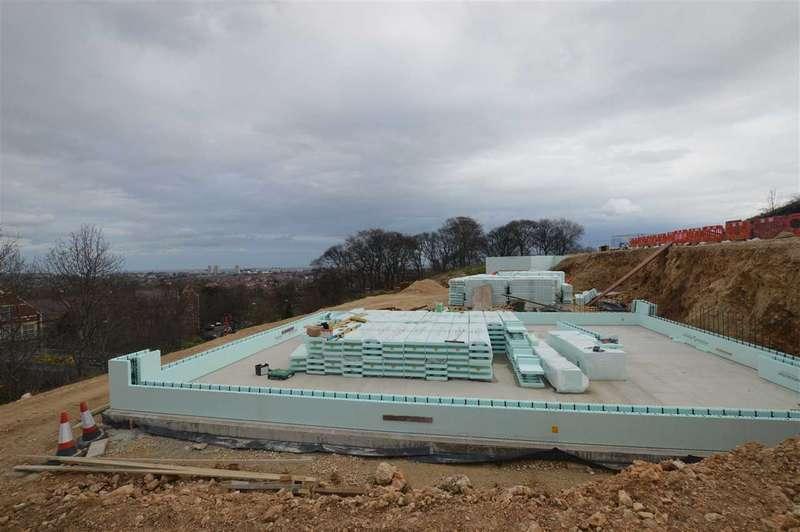 4 Bedrooms Detached House for sale in Humbledon Hill, Sunderland