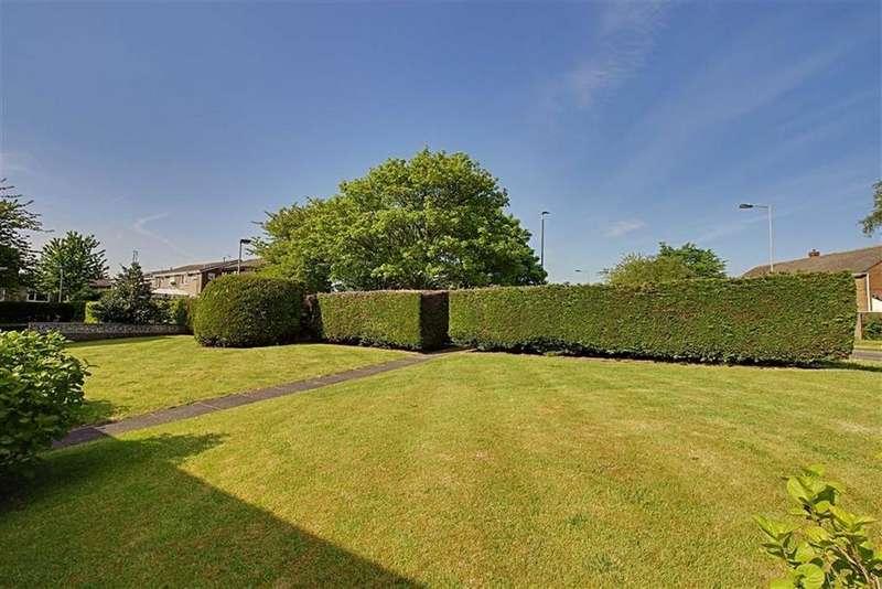 2 Bedrooms Detached Bungalow for sale in Hazel Grove, Marton