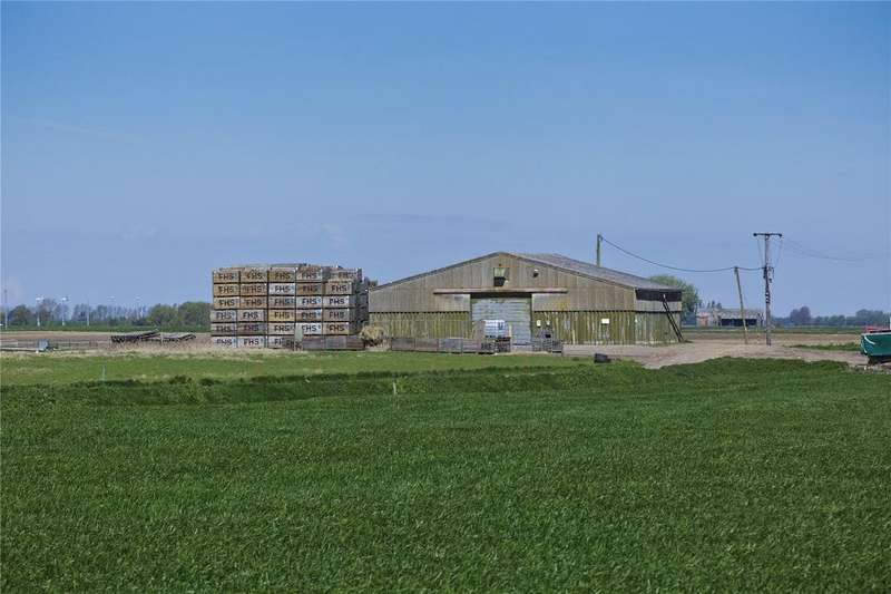 Farm Commercial for sale in Reed Fen Farm, Lakes End, Wisbech, PE14