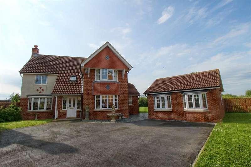 4 Bedrooms Detached House for sale in Caldey Gardens, Ingleby Barwick