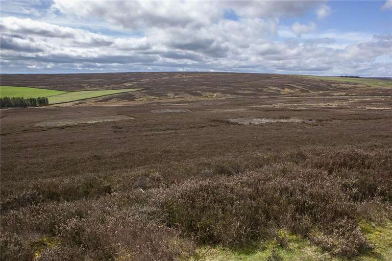 Land Commercial for sale in Wolsingham, Bishop Auckland, County Durham, DL13