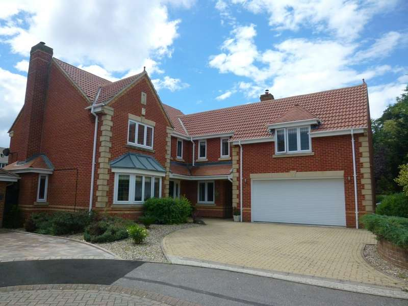 5 Bedrooms Detached House for sale in Old Basing RG24