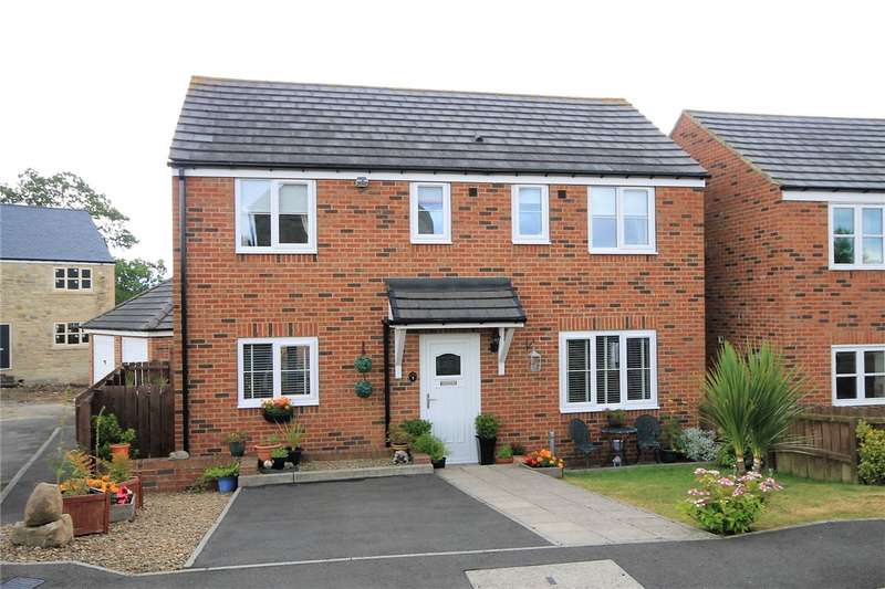 3 Bedrooms Detached House for sale in West Farm Drive, Chopwell, Newcastle upon Tyne, NE17