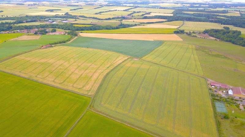 Farm Commercial for sale in Meiklerig Farm, Stenton, Dunbar, East Lothian, EH42