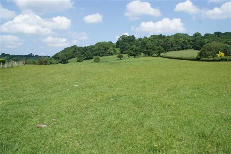Land Commercial for sale in Tregynon, Newtown