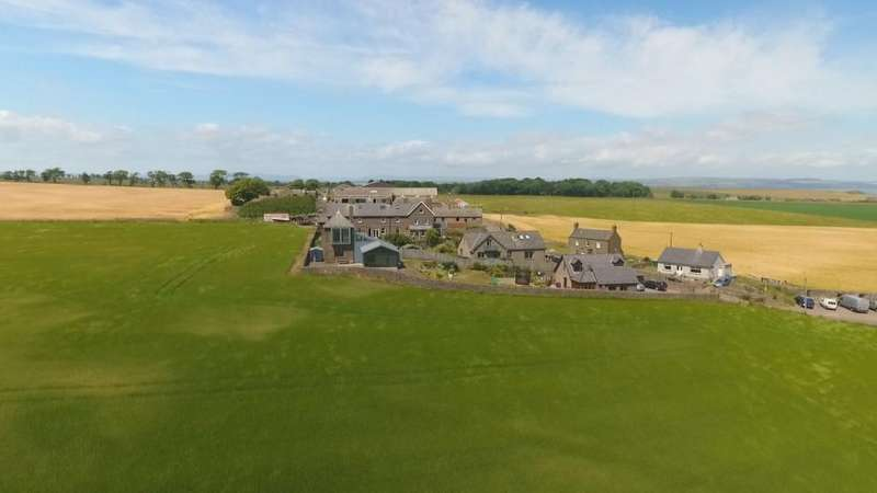4 Bedrooms Detached House for sale in Seaton of Usan, Montrose