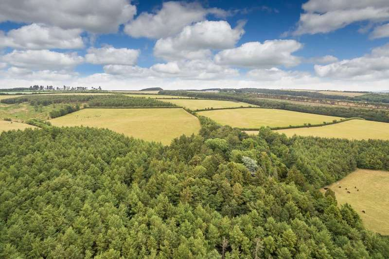 Land Commercial for sale in Lot 14 - Langley Forest, The Langley Estate, County Durham