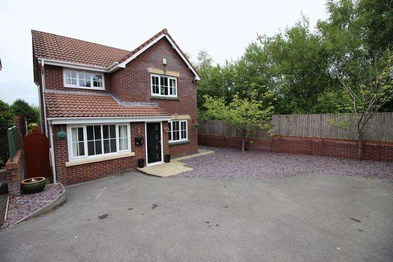 4 Bedrooms Detached House for sale in Sapphire Drive, Milton, Stoke-on-Trent, ST6