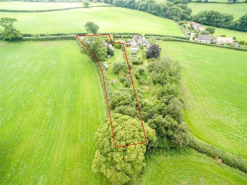 Land Commercial for sale in Melbury Osmond, Dorchester, Dorset, DT2