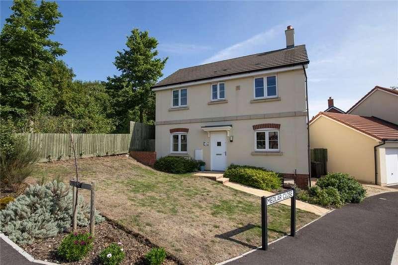 3 Bedrooms Detached House for sale in Medlar Close, Bristol, BS10
