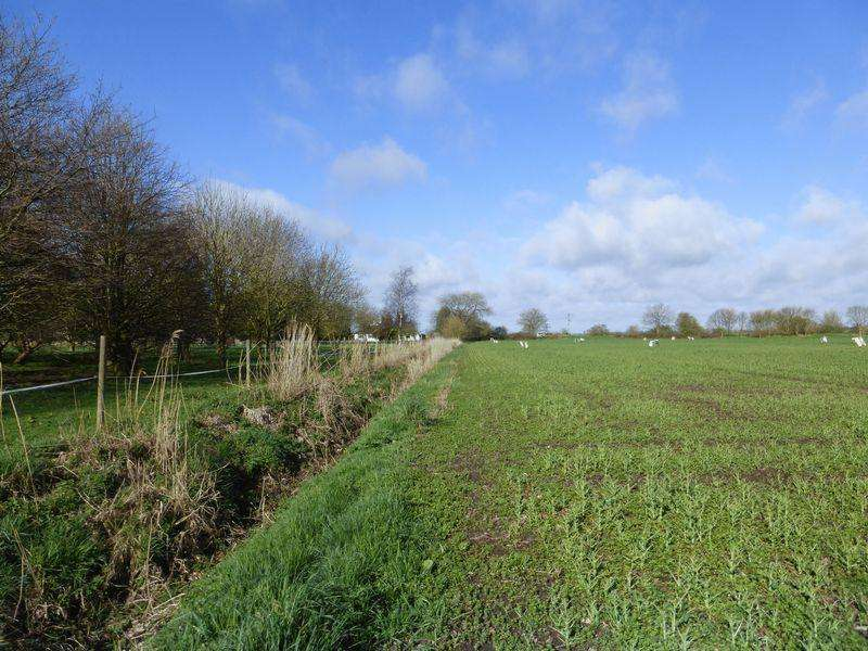 Land Commercial for sale in Hobhole Bank, Toynton All Saints