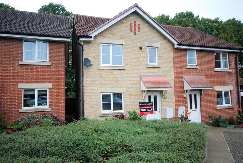 3 Bedrooms Semi Detached House for sale in Cygnet Court, Spalding
