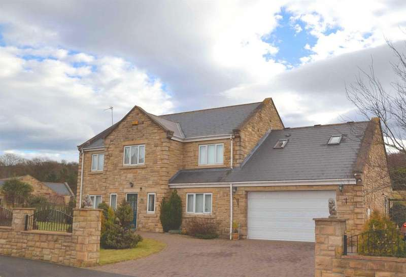 5 Bedrooms Detached House for sale in Parkside, Blackhill, Consett, DH8 5XR