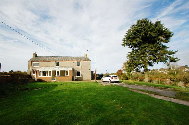 4 Bedrooms Detached House for sale in THE PLUDDS, RUARDEAN