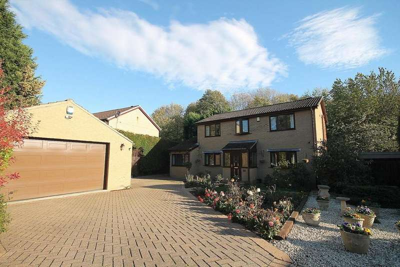 4 Bedrooms Detached House for sale in Hollowdene Garth, Crook