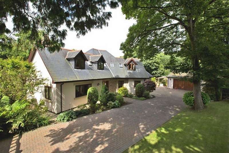 4 Bedrooms Detached House for sale in Springfield Park, Buckfastleigh, Buckfastleigh, Devon, TQ11