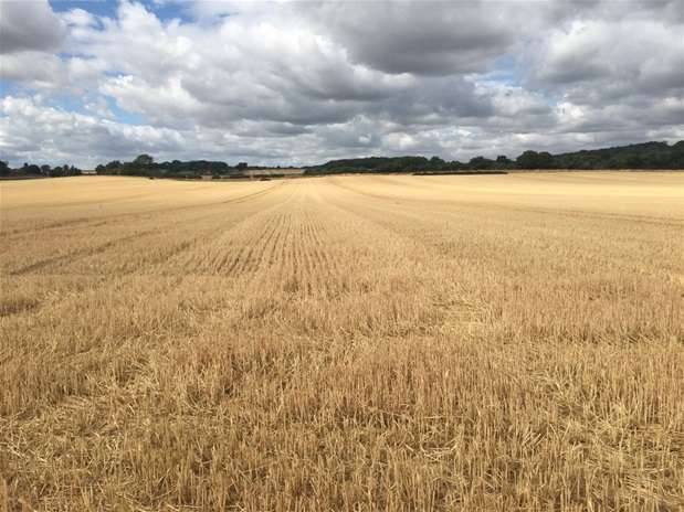 Land Commercial for sale in Maidenhead