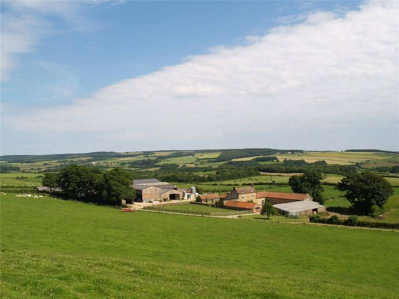 Farm Commercial for sale in Beacon Brow Road, Scalby, Scarborough, North Yorkshire, YO13