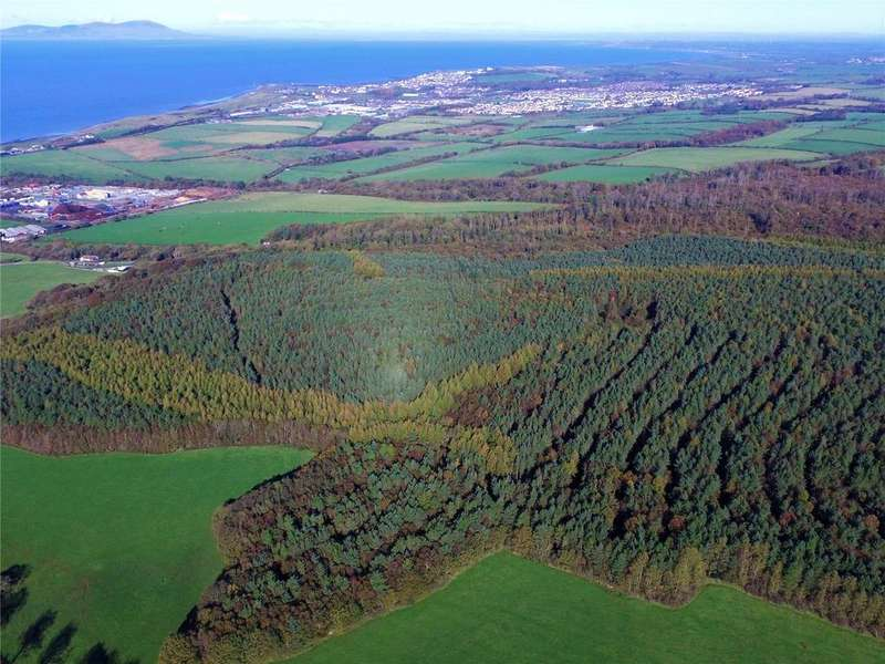 Land Commercial for sale in Flimby Great Wood, By Flimby, Cumbria