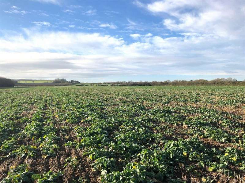 Land Commercial for sale in Wood Lane, Legbourne, LN11