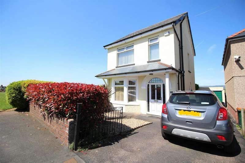 3 Bedrooms Detached House for sale in Brecon Road, Newport