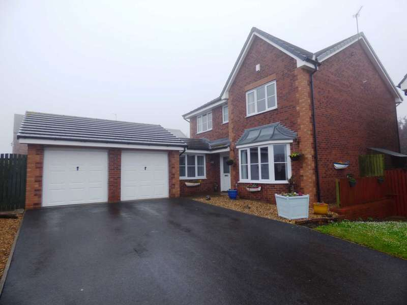 4 Bedrooms Detached House for sale in *** REDUCED *** Tynedale Close, Skelton