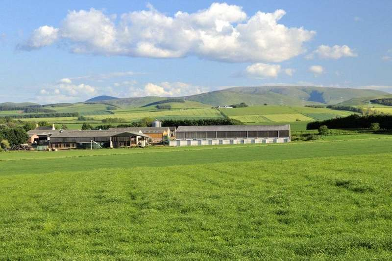 6 Bedrooms Farm Commercial for sale in Lot 1 - New Heaton Stickle Heaton, Cornhill-on-Tweed, Northumberland