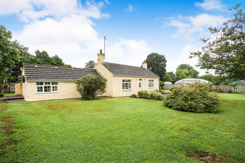 4 Bedrooms Detached Bungalow for sale in Bewcastle, Carlisle, CA6