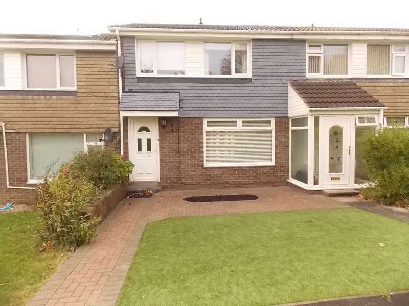 3 Bedrooms Terraced House for rent in Dunvegan, Chester-Le-Street