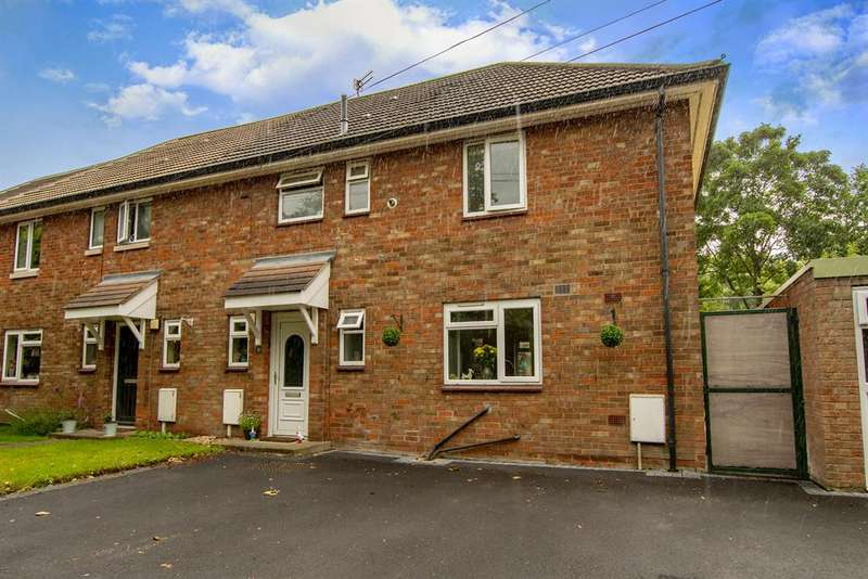3 Bedrooms Semi Detached House for sale in Larch Square, Auckley, Doncaster, DN9 3LL