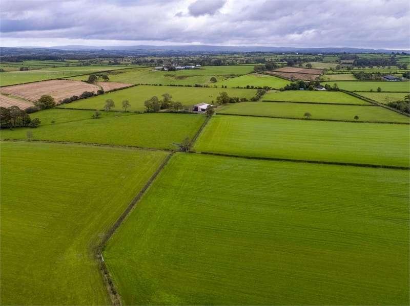 Land Commercial for sale in Lot 2 - Stubb Farm, Kirklinton, Carlisle, Cumbria